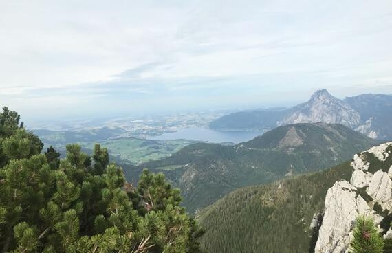 Ausblick vom Feuerkogel Wanderung Schmidinger