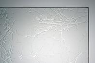 Ornamentglas UADI weiß