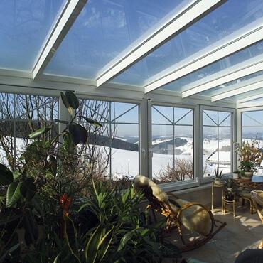 Wintergarten Pflanzen